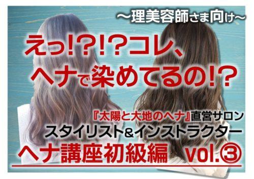 ヘナセミナー初級編【Youtube動画③】